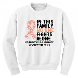 in this family no one fights alone endometrial cancer for light Youth Sweatshirt | Artistshot