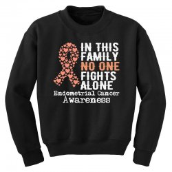 in this family no one fights alone endometrial cancer for dark Youth Sweatshirt | Artistshot