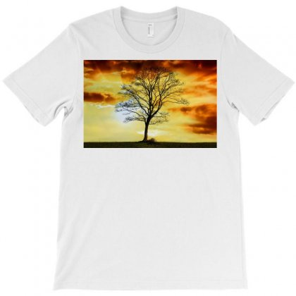 Branches Dawn Dusk Fall T-shirt Designed By Salmanaz