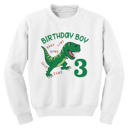 Birthday Boy 3 Youth Sweatshirt Designed By Artees Artwork