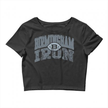 Iron Silver Crop Top Designed By