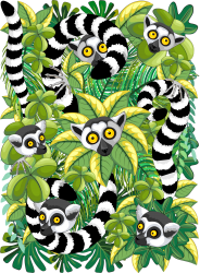 Lemurs In Madagascar Rainforest T-shirt