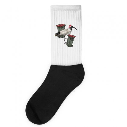 Xmas Chicken Socks Designed By Adore