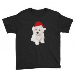 cute bolognese dog 1 Youth Tee | Artistshot