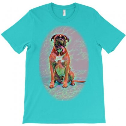 Cat And Dog Looking In The Cad T-shirt Designed By Kemnabi