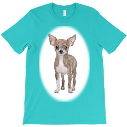Hungry Dog And Cat Licking Liith Copy Space S T-shirt Designed By Kemnabi