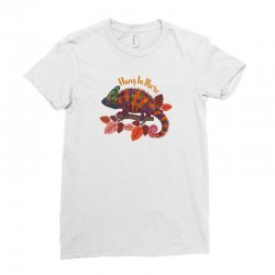 hang in there magical chameleon Ladies Fitted T-Shirt | Artistshot