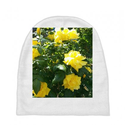 Yellow Roses In A Bush Baby Beanies Designed By Thoughtcloud