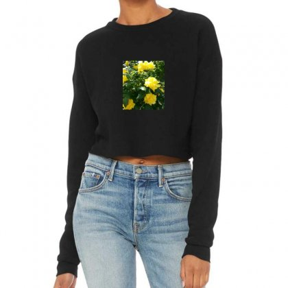 Yellow Roses In A Bush Cropped Sweater Designed By Thoughtcloud