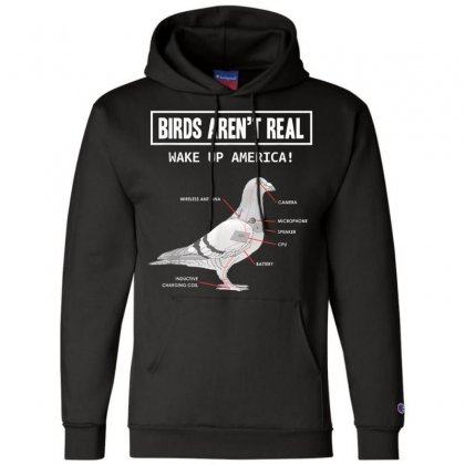 Birds Arent Real Gift T Shirt Champion Hoodie Designed By Cuser1744