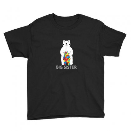 Big Sister Bear Autism Youth Tee Designed By Asatya
