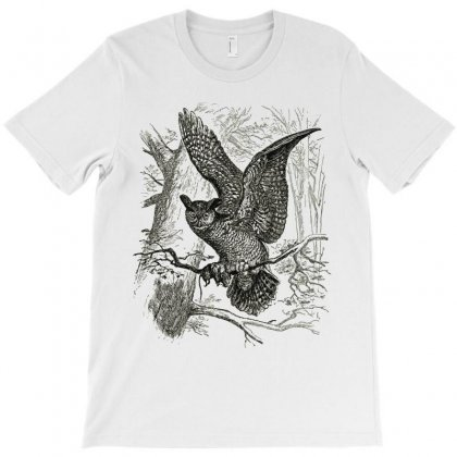 Owl Animals Wild Jungle Nature T-shirt Designed By Salmanaz