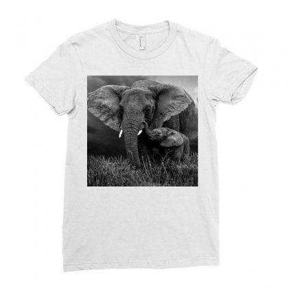 Elephant Ladies Fitted T-shirt Designed By Vj575789