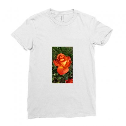 Rose Ladies Fitted T-shirt Designed By Achintya