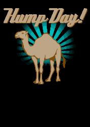 funny hump day camel   Artistshot