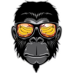 Monkey Cool | Artistshot