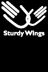 sturdy wings | Artistshot