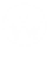 vw strip logo   Artistshot