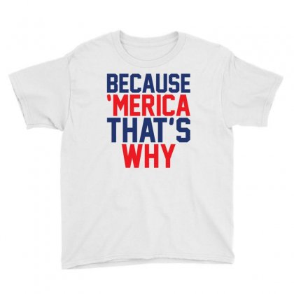 Because 'merica That's Why Youth Tee Designed By Tshiart