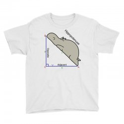 hypotenuse math humor Youth Tee | Artistshot