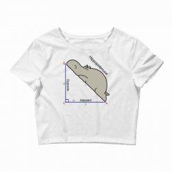 hypotenuse math humor Crop Top | Artistshot
