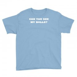can you see my balls sports football basketball Youth Tee | Artistshot