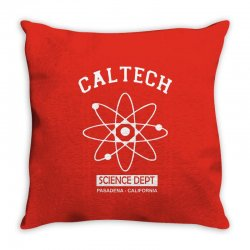 theory science Throw Pillow | Artistshot