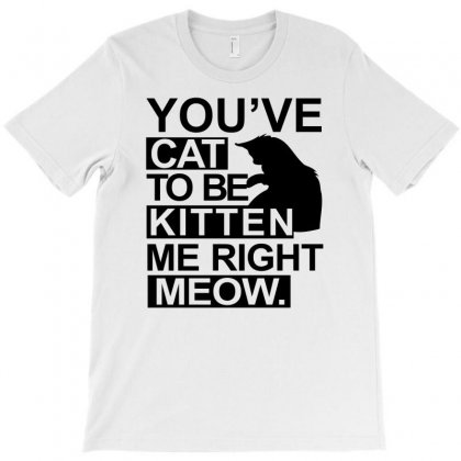 You've Cat To Be Kitten Me Right Meow Tshirt Funny Animal Lovers Tee C T-shirt Designed By Irvandwi2