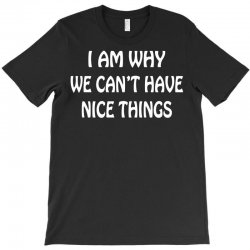 i am why we can't have nice things T-Shirt | Artistshot