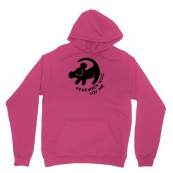 lion king remember who you are Unisex Hoodie | Artistshot