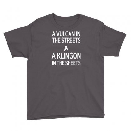 A Vulcan In The Streets A Kligon In The Sheets Youth Tee Designed By Lub1s