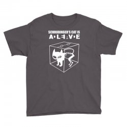 the big bang theory sheldon cooper schrodinger's cat Youth Tee | Artistshot